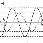 2 chất điểm dddh cùng tần số trên hai đường thẳng song song 608b49c256278.png