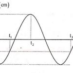 một chất điểm dĐĐh. Đồ thị biểu diễn li độ phụ thuộc vào t như hình vẽ. 608ac4e189875.png