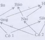 nếu có 1 bị loại bỏ hoàn toàn khỏi hệ sinh thái này thì theo lí thuyết, có bao nhiêu phát biểu sau đây đúng? 60f53e8da5357.png